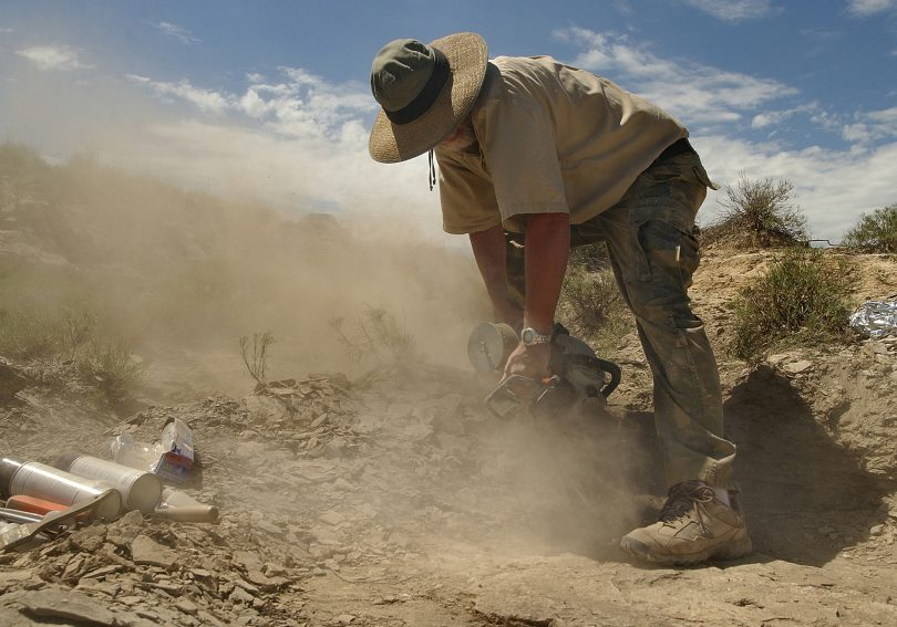 Mike Triebold searches for fossils on a dig.