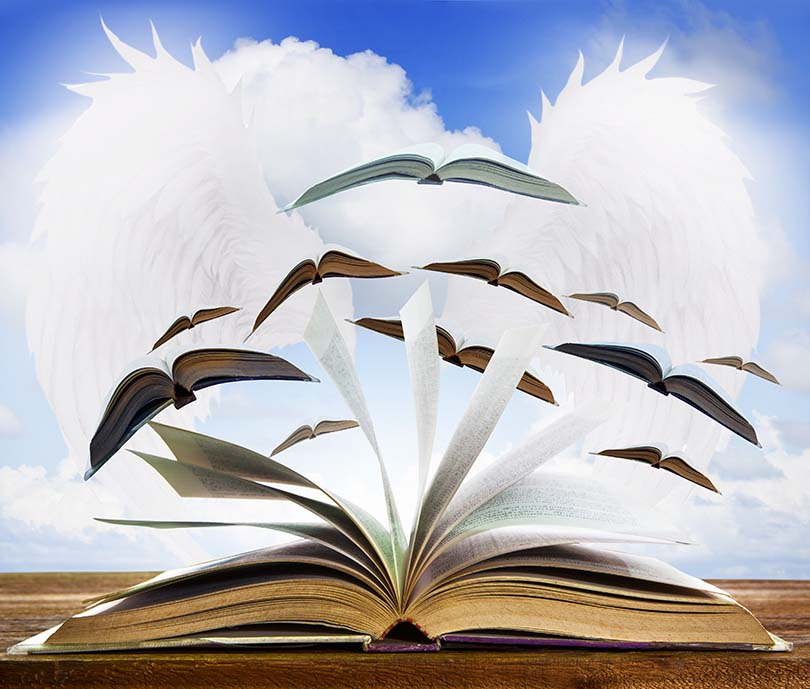 2015 Book Reviews: Books That Make the Imagination Soar | Colorado