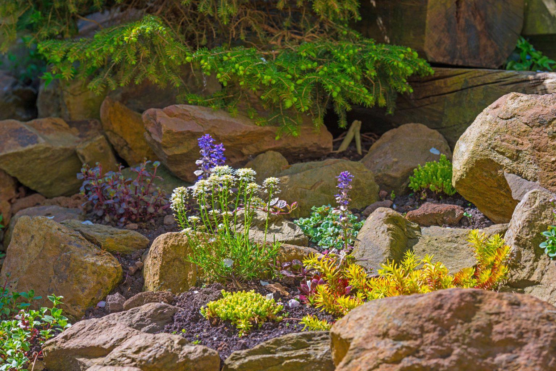 Create a Rockin' Rock Garden | Colorado Country Life Magazine on Rock Backyard  id=84441