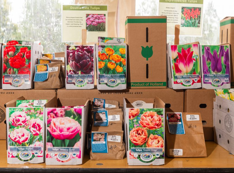 Fall Plant & Bulb Sale Denver Botanic Gardens September 27