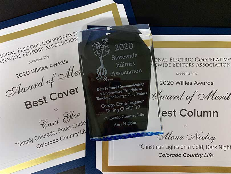 CCL's Willies Awards earned in 2020