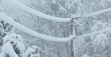 Sagging power lines from heavy snow