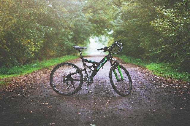mountain-bike-1149074_640.jpg