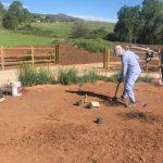 Lory State Park Volunteers Needed